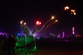 Burning Man by night